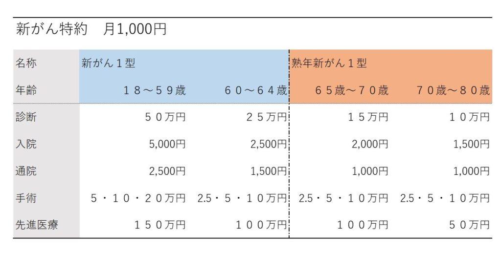 新がん特約(月1,000円)